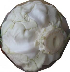 Белокочанная капуста: зеленый верх, белый низ